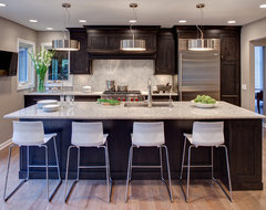 Naperville IL Kitchen contemporary-kitchen