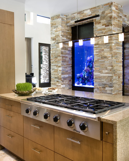modern kitchen Fabulous Fish Tanks