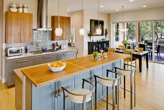 Net zero house austin area contemporary kitchen for Danze e davis architects