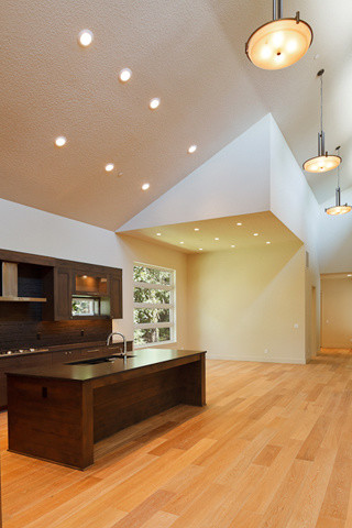 New 4,500 SF Spec House SW Portland Hills contemporary-kitchen
