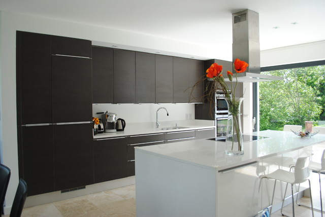 New House, Dunshaughlin, Co Meath contemporary-kitchen