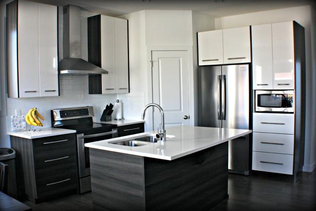 New Kitchen- July 2012 contemporary-kitchen
