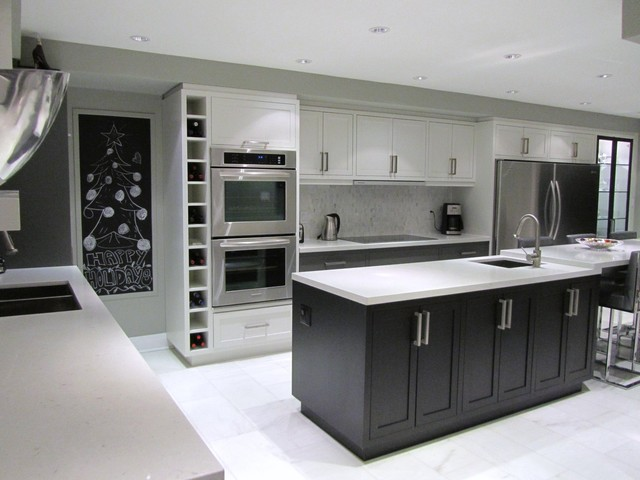 New Vision contemporary kitchen