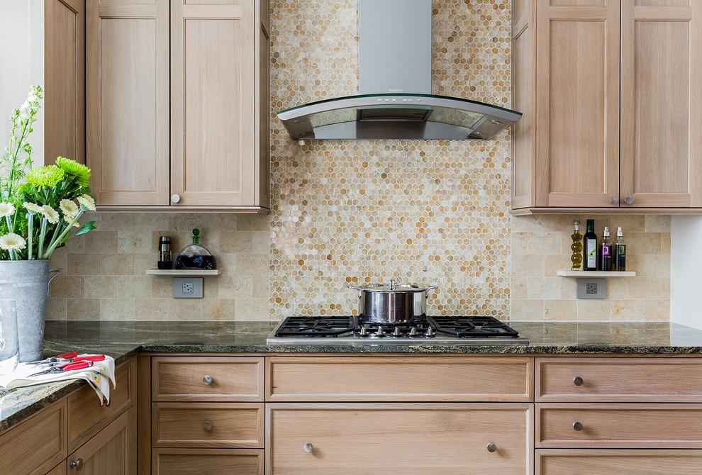 Newton MA - Modern Kitchen - Transitional - Kitchen ...