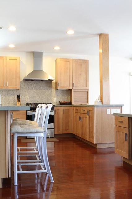 Newton Residence contemporary-kitchen