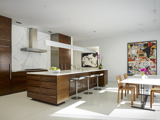 Northbrook House contemporary-kitchen