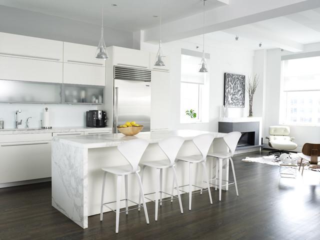Lew Loft contemporary-kitchen