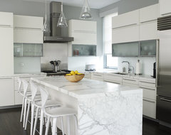Lew Loft contemporary-kitchen