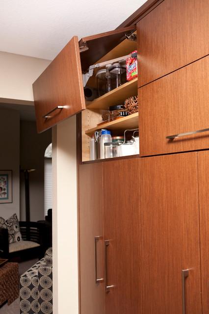 Oak Avenue Project modern-kitchen