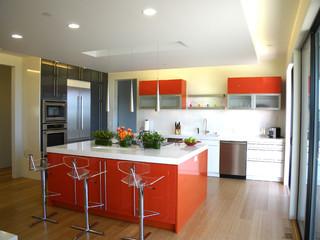 Olive Tree Lane modern kitchen