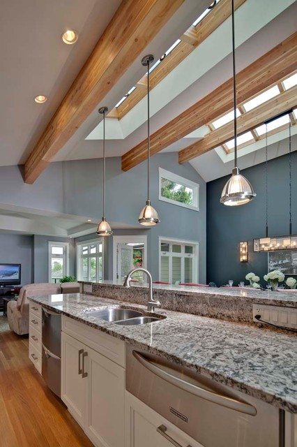 Kitchen with vaulted ceiling and skyroof contemporary for Vaulted ceiling kitchen designs