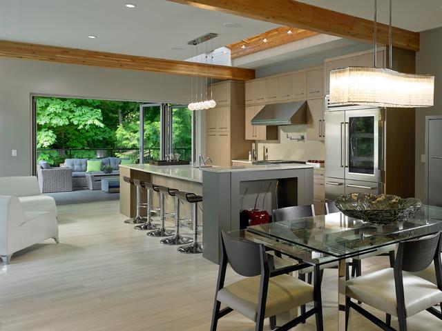 Open Concept Kitchen Dining Area Modern Kitchen