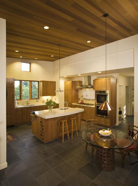 Open Concept Kitchen contemporary-kitchen