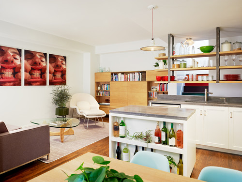 Open Plan Living Room and Kitchen - Williamsburg Renovation