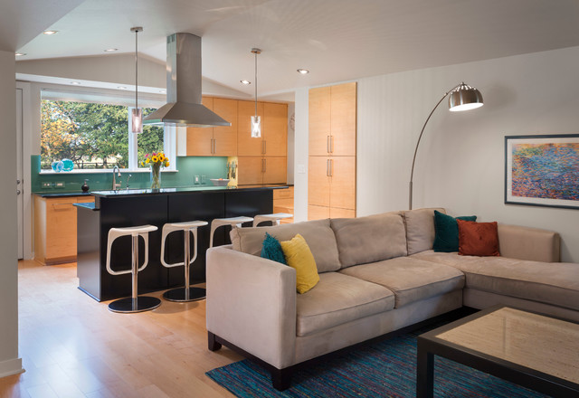 Opened Up and Made Modern in Zilker contemporary-kitchen