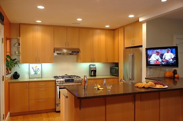 Orange Wall modern-kitchen