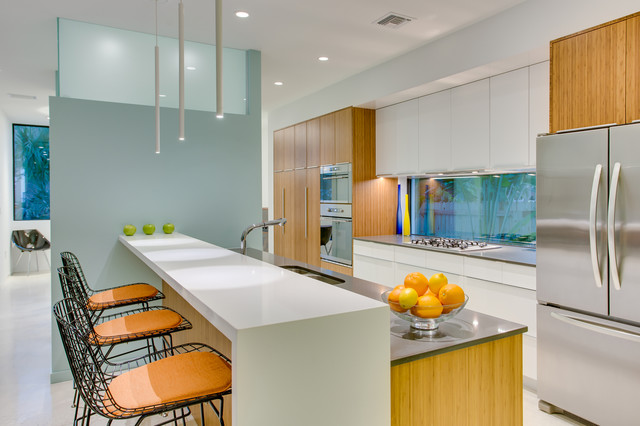 Osprey Avenue Contemporary - Contemporary - Kitchen - Tampa - by BORDEN Landscape Design