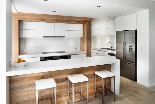 Ozone Extension/Renovation contemporary-kitchen