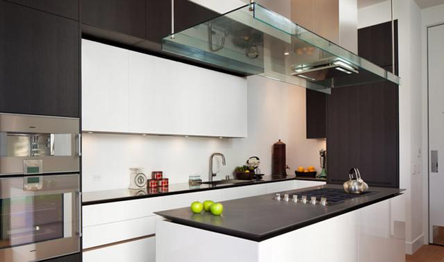 Pacific Heights Interior modern-kitchen
