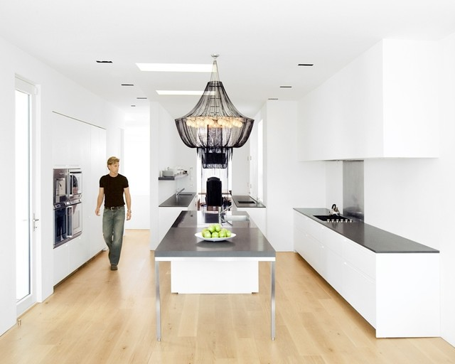 Pacific Heights Residence modern-kitchen