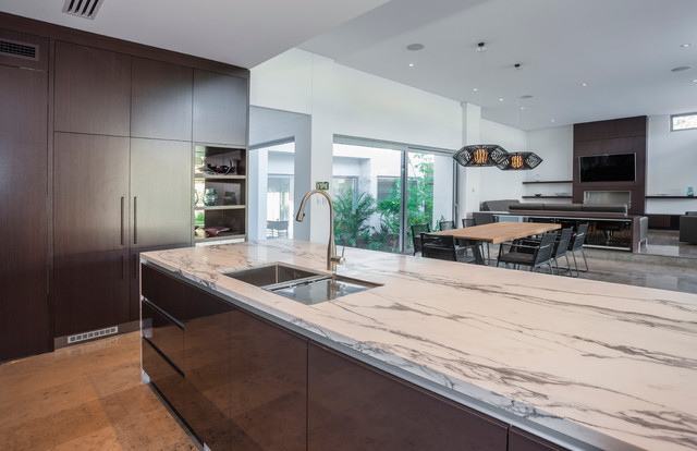 Paired Pavilions contemporary-kitchen