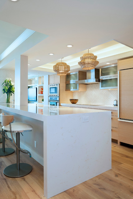 Palm beach contemporary kitchen contemporary kitchen - Kitchen cabinets west palm beach ...