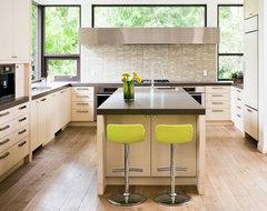 Palmerston Kitchen contemporary-kitchen