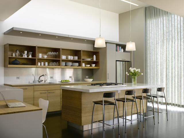 Park Street contemporary-kitchen