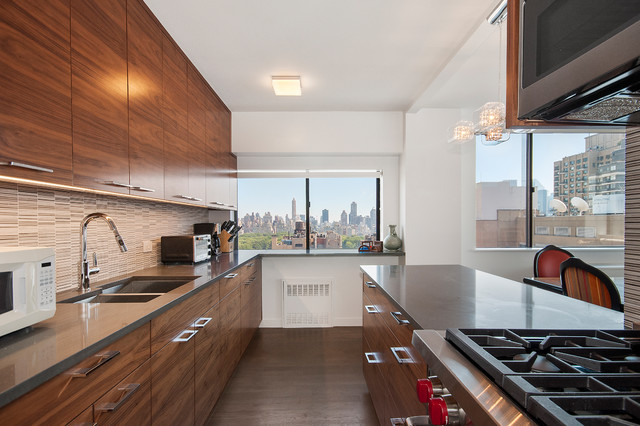 rental apartment 45 west 67th street new york contemporary