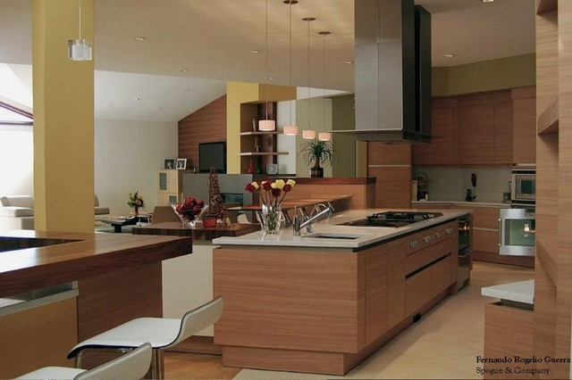Patel Residence contemporary-kitchen
