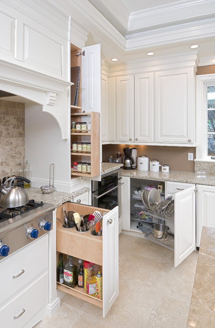 Kitchen Cabinet Special Features - an Ideabook by bbruno2