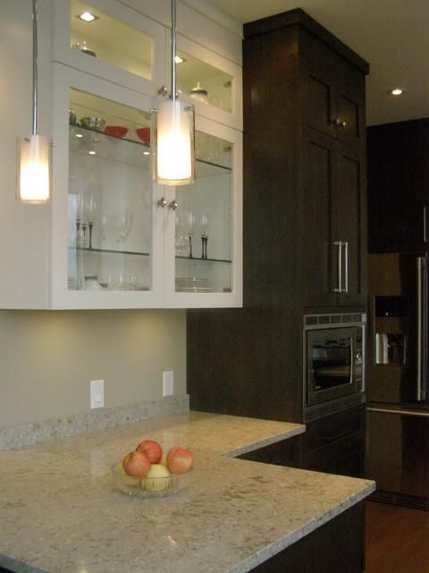 Penthouse Kitchen contemporary-kitchen