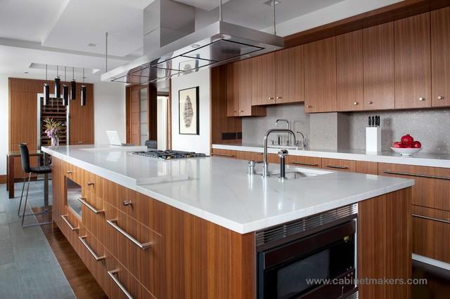 Penthouse on Boston Public Garden contemporary-kitchen