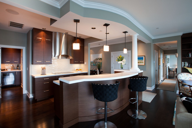 Penthouse on the River - Contemporary - Kitchen - boston - by Dovetailed Kitchens
