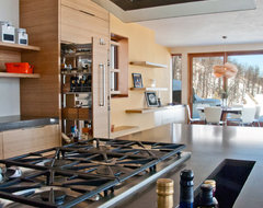 Phoenix Home contemporary-kitchen