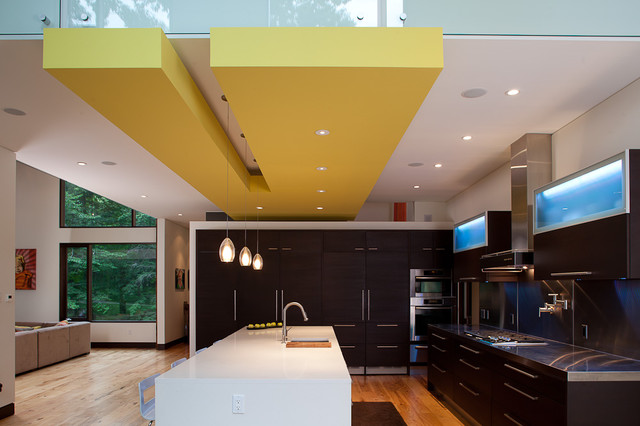 Pigeon Creek Residence contemporary-kitchen