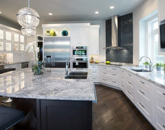 Plato Woodwork - Wilmington project contemporary kitchen