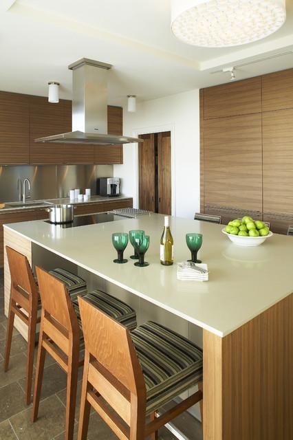 Plaza Towers Condo Renovation modern-kitchen