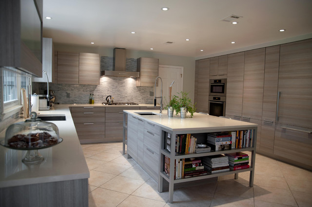 Interior Poggenpohl Kitchen Cabinets poggenpohl cabinets houzz example of a trendy kitchen design in other with paneled appliances