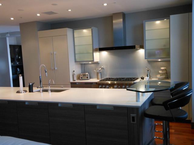 Poggenpohl- Teak Lava and Light Grey contemporary-kitchen