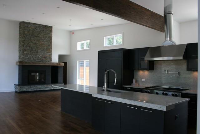 Polz Residence contemporary-kitchen
