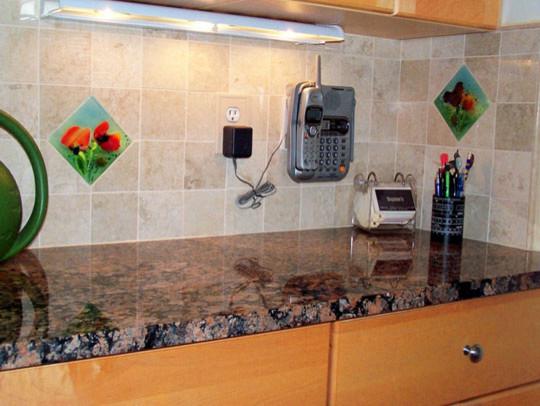 Poppy Backsplash modern-kitchen