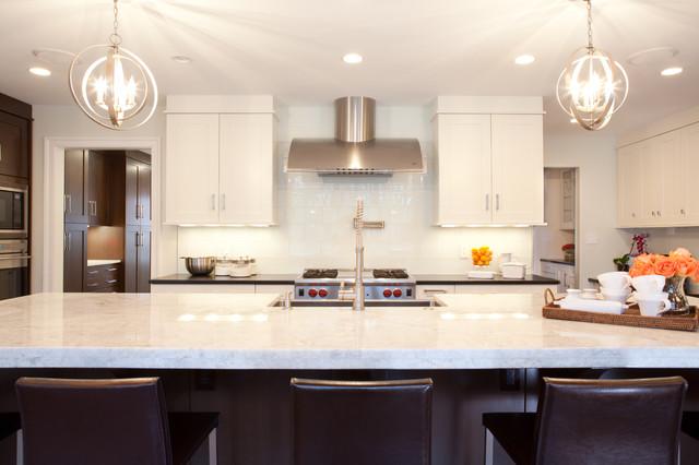 Potomac III transitional-kitchen