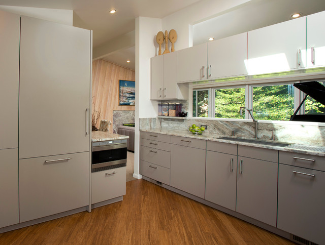 Potomac Kitchen And Bathrooms Contemporary Kitchen Dc Metro By Elite Kitchens