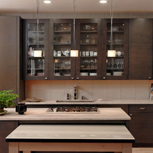 Potomac  Maryland - Contemporary - Kitchen