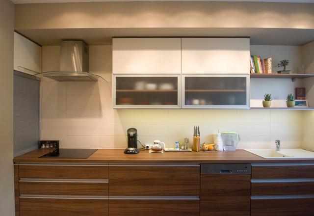 Private home contemporary-kitchen