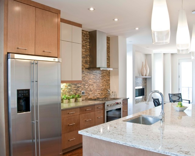 Private Residence contemporary-kitchen