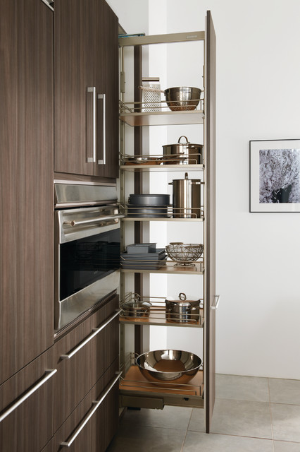 Pull-Out Pantry contemporary-kitchen