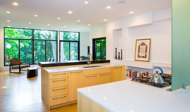 pyle contemporary-kitchen