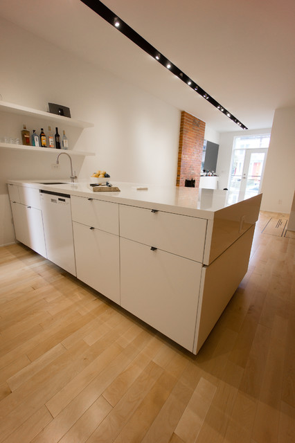 Queen and dovercourt contemporary kitchen for Design consulting toronto